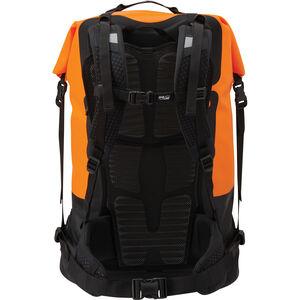 SealLine Pro™ Dry Pack | 70L | Back Panel