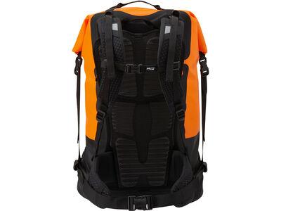 Pro Pack, back